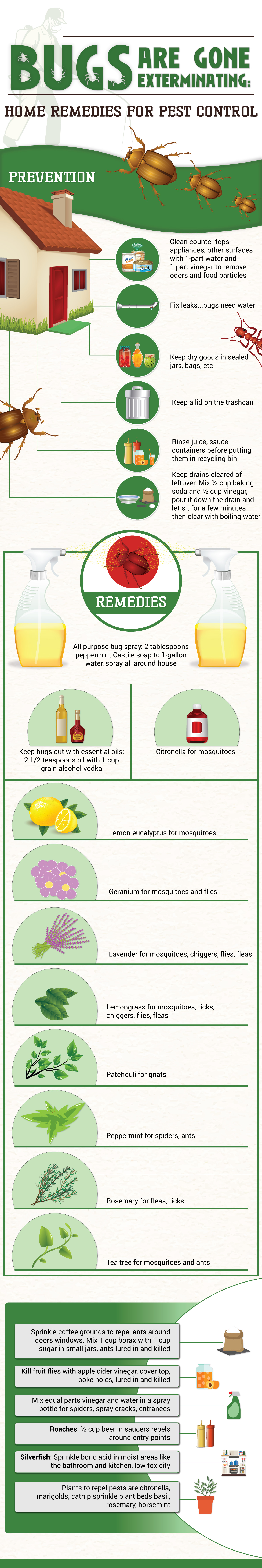 23-do-it-yourself-pest-control-tips-infographic-1